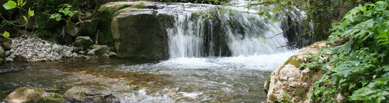 WWF Oasis in Morigerati waterfall