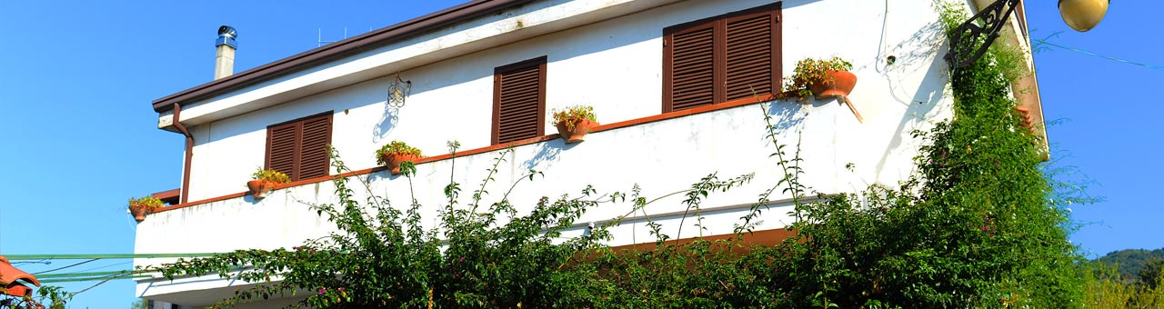 Pet friendly holiday homes Cilento