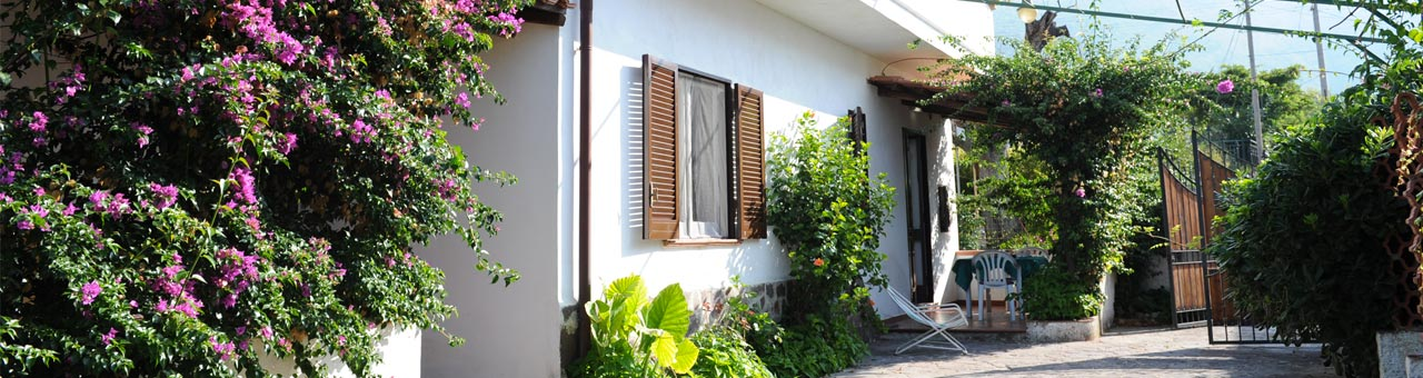 Pet friendly holiday accommodation palinuro