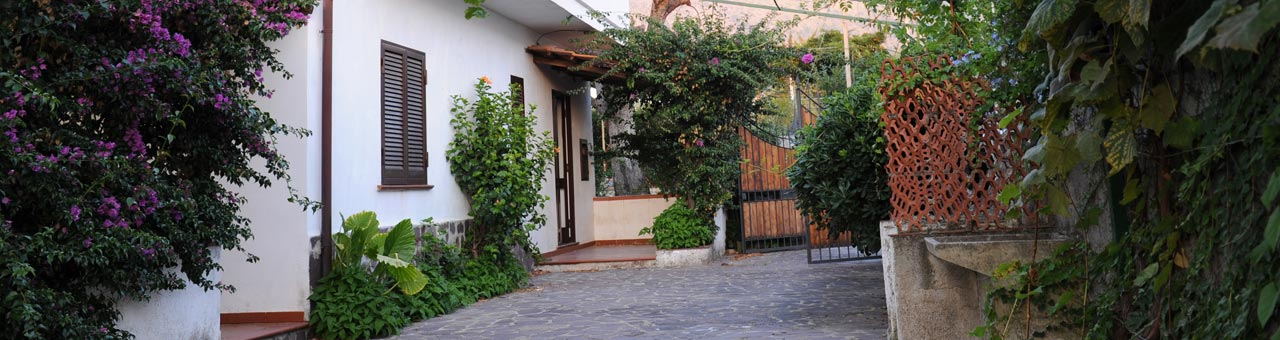 Pet friendly holiday home Cilento
